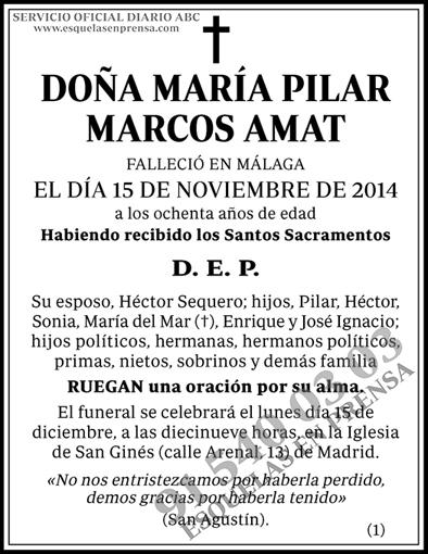 María Pilar Marcos Amat